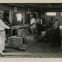 Men sawing wood at Minidoka Relocation Center
