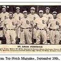 St. Louis Terriers