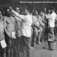 mexicans being inspected for lice 1920s.jpg